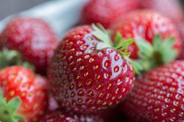 Erdbeeren selber pflücken: Erdbeerzeit