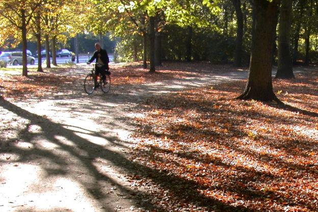 Herbstanfang: buntes Laub markiert den Herbstbeginn