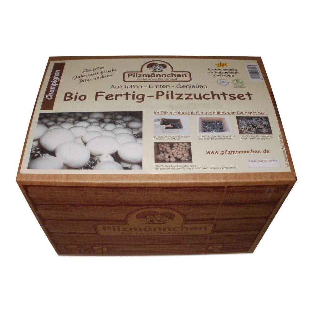 Pilze selber züchten: Bio Champignon Pilzzucht-Set Pilzzuchtkarton