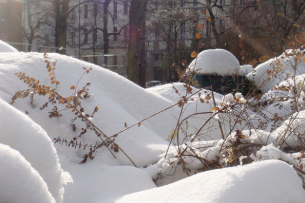 Winteranfang: der erste Schnee - es ist Winter