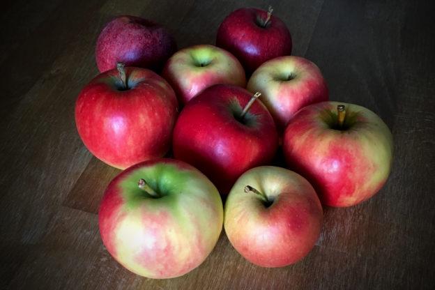Äpfel: Wann ist Apfelzeit / Apfelernte?