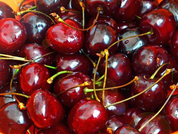 Kirschenzeit: Kirschen selber pflücken