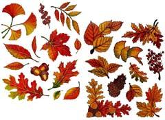 Herbstdeko Fensterbilder Fensterdeko: buntes Laub